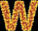 буквы из листьев, буква w, осенняя листва, желтые листья, английский алфавит, letters from leaves, letter w, autumn foliage, yellow leaves, english alphabet, briefe aus den blättern, w buchstaben, blätter im herbst, gelbe blätter, das englische alphabet, lettres des feuilles, lettre w, feuilles d'automne, les feuilles jaunes, l'alphabet anglais, cartas de las hojas, hojas de otoño, las hojas amarillas, el alfabeto inglés, lettere dalle foglie, lettera w, foglie di autunno, foglie gialle, l'alfabeto inglese, letras das folhas, letra w, folhas de outono, as folhas amarelas, o alfabeto inglês, букви з листя, осіннє листя, жовте листя, англійський алфавіт