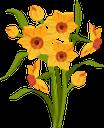 цветок нарцисса, желтый цветок, нарцисс, букет цветов, цветы, флора, желтый, flower narcissus, yellow flower, narcissus, bouquet of flowers, flowers, yellow, blume narzisse, gelbe blume, narzisse, blumenstrauß, blumen, gelb, fleur narcisse, fleur jaune, narcisse, bouquet de fleurs, fleurs, flore, jaune, flor narciso, flor amarilla, ramo de flores, amarillo, fiore narciso, fiore giallo, mazzo di fiori, fiori, giallo, narciso de flores, flor amarela, narciso, buquê de flores, flores, flora, amarelo, квітка нарциса, жовта квітка, нарцис, букет квітів, квіти, жовтий