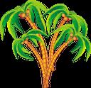 пальма, тропическое растение, тропическое дерево, деревья, зеленое растение, кокосовая пальма, palm tree, tropical plant, tropical tree, trees, green plant, coconut tree, palme, tropische pflanze, tropischer baum, bäume, grüne pflanze, kokosnussbaum, palmier, plante tropicale, arbre tropical, arbres, plante verte, cocotier, palmera, árbol tropical, árboles, árbol de coco, palma, pianta tropicale, albero tropicale, alberi, pianta verde, albero di cocco, palmeira, planta tropical, árvore tropical, árvores, planta verde, coqueiro, тропічна рослина, тропічне дерево, дерева, зелена рослина, кокосова пальма
