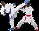 каратэ, восточные единоборства, кимоно