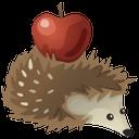 ёж, ёжик с яблоком, иголки ежа, hedgehog with an apple, needles of a hedgehog, hedgehog, mit apfel hedgehog, nadel hedgehog, hérisson, hérisson pomme, hérisson d'aiguille, erizo, erizo con manzana, hedgehog aguja, riccio, riccio con mela, ago riccio, ouriço com maçã, hedgehog agulha, їжак, їжачок з яблуком, голки їжака