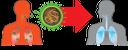 вирус, covid-19, коронавирус, коронавирусная инфекция, бактерия, инфекция, инфекционное заболевание, эпидемия, вирусология, органы человека, анатомия, внутренние органы, части тела, тело человека, coronavirus infection, bacterium, infectious disease, epidemic, virology, medicine, human organs, anatomy, internal organs, parts of the body, human body, coronavirus-infektion, bakterium, infektion, infektionskrankheit, epidemie, medizin, menschliche organe, innere organe, körperteile, menschlicher körper, infection à coronavirus, bactérie, infection, maladie infectieuse, épidémie, virologie, médecine, organes humains, anatomie, organes internes, parties du corps, corps humain, infección por coronavirus, bacteria, infección, enfermedad infecciosa, virología, órganos humanos, anatomía, órganos internos, partes del cuerpo, cuerpo humano, virus, coronavirus, infezione da coronavirus, batterio, infezione, malattia infettiva, organi umani, organi interni, parti del corpo, corpo umano, vírus, coronavírus, infecção por coronavírus, bactéria, infecção, doença infecciosa, epidemia, virologia, medicina, órgãos humanos, anatomia, órgãos internos, partes do corpo, corpo humano, вірус, коронавірус, коронавірусна інфекція, бактерія, інфекція, інфекційне захворювання, епідемія, вірусологія, медицина, органи людини, анатомія, внутрішні органи, частини тіла, тіло людини