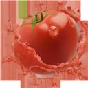 фрукты с брызгами сока, помидор с брызгами сока, фрукты, помидор, сок, брызги сока, томатный сок, красный, томаты, fruit with splashing juice, tomato with splashing juice, tomato, juice, spray juice, tomato juice, red, tomatoes, frucht mit spritzsaft, tomate mit spritzsaft, obst, saft, spritzsaft, tomatensaft, rot, tomaten, fruit avec éclaboussures de jus, tomate avec jus éclaboussant, fruit, jus, jus de pulpe, jus de tomate, rouge, fruta con jugo de salpicar, tomate con salpicaduras de jugo, jugo, jugo de aerosol, jugo de tomate, rojo, tomates, frutta con succo di frutta, pomodoro con succo di frutta, pomodoro, succo, succo spray, succo di pomodoro, rosso, pomodori, frutas com salpicos de suco, tomate com salpicos de suco, fruta, suco, suco de macarrão, suco de tomate, vermelho, tomate, фрукти з бризками соку, помідор з бризками соку, фрукти, помідор, сік, бризки соку, томатний сік, червоний, томати