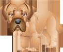 собака, маленькая собачка, щенок, милый щенок, животные, фауна, dog, little dog, puppy, cute puppy, animals, hund, kleiner hund, welpe, niedlicher welpe, tiere, chien, petit chien, chiot, chiot mignon, animaux, faune, perro, perrito, perrito lindo, animales, cane, cagnolino, cucciolo, cucciolo carino, animali, cachorro, cachorro pequeno, filhote cachorro, cachorro cute, animais, fauna, маленька собачка, щеня, миле щеня, тварини