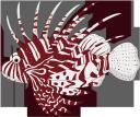 рыба крылатка, морская рыба, скорпионовые, рыбы кораллового рифа, морская фауна, океанические рыбы, fish lionfish, sea fish, scorpion fish, coral reef fish, marine fauna, ocean fish, fisch lionfish, seefisch, skorpionfische, korallenrifffische, meeresfauna, meeresfische, poisson-poisson poisson, poisson scorpion, poisson corallien, faune marine, poisson de mer, pez león, pez mar, escorpión, arrecife de coral, pez oceánico, pesce leone, pesce di mare, pesci scorpione, pesci barriera corallina, fauna marina, pesci oceanici, peixe peixe-leão, peixe do mar, peixe-escorpião, peixe de recife de coral, fauna marinha, peixe do oceano, риба крилатка, морська риба, скорпіонові, риби коралового рифу, морська фауна, океанічні риби