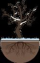 дерево, сухое дерево, ствол дерева, дерево без листьев, зима, wood, dry tree, tree trunk, tree without leaves, baum, toter baum, baumstamm, baum ohne blätter, arbre, arbre mort, tronc d'arbre, arbre sans feuilles, árbol, árbol muerto, tronco de árbol, árbol sin hojas, albero, albero morto, tronco d'albero, albero senza foglie, árvore, árvore morta, tronco de árvore, árvore sem folhas, сухе дерево, стовбур дерева, дерево без листя