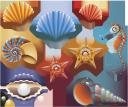 ракушка, панцирь моллюска, морской конек, жемчуг, морская звезда, ракушки, pearl, shellfish shell, sea horse, pearls, starfish, seashells, shell, muschelschale, seepferdchen, perlen, seesterne, muscheln, coquille, seahorse, perles, étoiles de mer, coquillages, concha de almeja, caballito de mar, perlas, estrellas de mar, conchas marinas, conchiglia, cavalluccio marino, perle, stelle marine, conchiglie, concha, cavalo marinho, pérolas, estrelas do mar, conchas, мушля, панцир молюска, морський коник, перли, морська зірка, мушлі