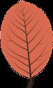 осенняя листва, осенние листья, осень, осенний лист, листок дерева, листопад, autumn, autumn leaves, a leaf of a tree, a fall leaf, herbst, herbstlaub, ein blatt eines baumes, ein herbstblatt, automne, feuilles d'automne, une feuille d'arbre, une feuille d'automne, otoño, hojas de otoño, una hoja de un árbol, una hoja de otoño, autunno, foglie d'autunno, una foglia di un albero, una foglia caduta, outono, folhas de outono, uma folha de uma árvore, uma folha de outono, осіннє листя, осінь, осінній лист