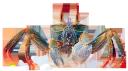 краб, членистоногие, ракообразные, десятиногие ракообразные, морские ракообразные, голубой краб, crab, arthropods, crustaceans, decapod crustaceans, marine crustaceans, blue crab, krabben, arthropoden, krustentiere, decapodkrebstiere, meereskrustentieren, blaue krabben, crabe, arthropodes, crustacés, crustacés décapodes, crustacés marins, crabe bleu, cangrejo, artrópodos, crustáceos decápodos, crustáceos marinos, cangrejo azul, granchio, artropodi, crostacei, decapodi, crostacei marini, blu granchio, caranguejo, artrópodes, crustáceos, crustáceos decápodes, crustáceos marinhos, caranguejo azul