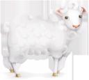 овечка, овца, барашек, баран, домашние животные, парнокопытные, lamb, sheep, domestic animals, lamm, schafe, haustiere, paarhufer, agneau, mouton, animal domestique, artiodactyle, corderos, ovejas, animales domésticos, artiodáctilos, agnelli, pecore, animali domestici, artiodattili, cordeiro, ovelha, animais domésticos, artiodactyls, вівця, баранчик, домашні тварини, парнокопитні