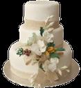 свадебный торт, цветы, букет цветов, торт на заказ, бант, белый, торт с мастикой многоярусный, wedding cake, flowers, bouquet of flowers, a cake to order, bow, white, multi-tiered cake with mastic, cake custom, hochzeitstorte, blumen, blumenstrauß, ein kuchen, bogen, weiß, multi-tier-kuchen mit mastix, kuchen nach maß zu bestellen, gâteau de mariage, fleurs, bouquet de fleurs, un gâteau à l'ordre, arc, blanc, gâteau à plusieurs niveaux avec du mastic, gâteau personnalisé, pastel de bodas, ramo de flores, una tarta a la orden, blanco, torta de varios niveles con mastique, de encargo de la torta, torta nuziale, fiori, bouquet di fiori, una torta di ordinare, bianco, torta a più livelli con mastice, la torta personalizzata, bolo de casamento, flores, buquê de flores, um bolo para encomendar, arco, bolo de várias camadas branco com aroeira, costume bolo, торт png