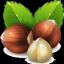 фундук, лесной орех, орехи, hazelnut, nuts, haselnuss, nüsse, noisette, noix, avellana, nueces, nocciola, noci, avelã, nozes, лісовий горіх, горіхи