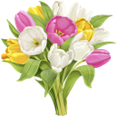 тюльпан, букет цветов, букет тюльпанов, цветы, белые тюльпаны, белые цветы, красный тюльпан, желтый тюльпан, красный цветок, желтый цветок, флора, весна, tulip, bouquet of flowers, bouquet of tulips, flowers, white tulips, white flowers, red tulip, yellow tulip, red flower, yellow flower, spring, tulpe, blumenstrauß, blumenstrauß von tulpen, blumen, weiße tulpen, weiße blumen, rote tulpe, gelbe tulpe, rote blume, gelbe blume, frühling, tulipe, bouquet de fleurs, bouquet de tulipes, fleurs, tulipes blanches, fleurs blanches, tulipe rouge, tulipe jaune, fleur rouge, fleur jaune, flore, printemps, tulipán, ramo de flores, ramo de tulipanes, tulipanes blancos, flores blancas, tulipán rojo, tulipán amarillo, flor roja, flor amarilla, tulipano, mazzo di fiori, bouquet di tulipani, fiori, tulipani bianchi, fiori bianchi, tulipano rosso, tulipano giallo, fiore rosso, fiore giallo, tulipa, buquê de flores, buquê de tulipas, flores, tulipas brancas, flores brancas, tulipa vermelha, tulipa amarela, flor vermelha, flor amarela, flora, primavera, букет квітів, букет тюльпанів, квіти, білі тюльпани, білі квіти, червоний тюльпан, жовтий тюльпан, червона квітка, жовта квітка