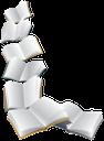 книжка, открытая книга, чистый лист, школа, book, open book, clean sheet, school, buch, offenes buch, blank, schule, livre, livre ouvert, vide, école, libro abierto, en blanco, la escuela, libro, libro aperto, vuoto, scuola, livro, livro aberto, em branco, a escola, відкрита книга, чистий аркуш