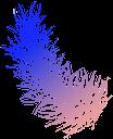 перо птицы, перо, птицы, bird feather, feather, birds, vogelfeder, feder, vögel, plume d'oiseau, plume, oiseaux, faune, pluma de pájaro, pluma, pájaros, piume di uccelli, piume, uccelli, pena de pássaro, pena, pássaros, fauna, пір'я птиці, пір'я, птиці, фауна