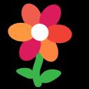 flower, plant, nature, environment, ecology, gerbera, цветок, природа, растение