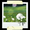 фотография, снимок, picture, snapshot, foto, bild, photographie, image, fotografía, imagen, immagine, fotografia, quadro, фотографія, знімок, tif