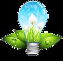 экология, зеленый лист, цветок, лилия, электролампочка, ecology, green, leaf, flower, lily, light bulb, ökologie, grün, blatt, blüte, lilie, glühbirne, écologie, vert, feuille, fleur, lis, ampoule, ecologia, folha, lírio, lâmpada, ecología, verde, hoja, flor, lirio, bombilla