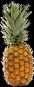 ананас, спелый ананас, тропический плод, pineapple, ripe pineapple, tropical fruit, reife ananas, tropische früchte, ananas mûr, de fruits tropicaux, piña, piña madura, frutas tropicales, ananas, ananas maturo, frutta tropicale, abacaxi, abacaxi maduro, fruta tropical