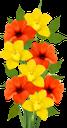 цветы, букет цветов, желтый нарцисс, красный цветок, флора, flowers, bouquet of flowers, yellow daffodil, red flower, blumen, blumenstrauß, gelbe narzisse, rote blume, fleurs, bouquet de fleurs, jonquille jaune, fleur rouge, flore, ramo de flores, narciso amarillo, flor roja, fiori, bouquet di fiori, giunchiglia gialla, fiore rosso, flores, buquê de flores, narciso amarelo, flor vermelha, flora, квіти, букет квітів, жовтий нарцис, червона квітка