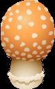 грибы, лесные грибы, мухомор, mushrooms, forest mushrooms, pilze, waldpilze, champignons, champignons forestiers, setas, setas del bosque, funghi, funghi della foresta, cogumelos, cogumelos da floresta, amanita, гриби, лісові гриби