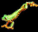 лягушка, древесная лягушка, зеленая лягушка, жаба, frog, tree frog, green frog, toad, frosch, laubfrosch, grüner frosch, kröte, grenouille, grenouille d'arbre, grenouille verte, crapaud, rana arbórea, rana, raganella, rana verde, rospo, rã, rã de árvore, rã verde, sapo