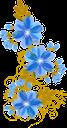 цветы, синий цветок, синий, флора, flowers, blue flower, blue, blumen, blaue blume, blau, fleurs, fleur bleue, flore, bleu, fiori, fiore blu, blu, flores, flor azul, flora, azul, квіти, синя квітка, синій