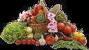 корзина с продуктами, еда, корзина с овощами, бобы, помидор, лук, сладкий перец, овощи, чеснок, basket with food, food, basket with vegetables, beans, tomato, onion, sweet pepper, greens, parsley, vegetables, garlic, radish, korb mit essen, essen, korb mit gemüse, bohnen, tomaten, zwiebeln, paprika, petersilie, gemüse, knoblauch, rettich, panier avec nourriture, nourriture, panier avec légumes, haricots, oignon, poivron, légumes verts, persil, légumes, ail, radis, canasta con comida, canasta con verduras, frijoles, cebolla, pimiento, perejil, verduras, ajo, rábano, cestino con cibo, cibo, cestino con verdure, fagioli, pomodoro, cipolla, peperone dolce, prezzemolo, verdure, aglio, ravanello, cesto com comida, comida, cesto com vegetais, feijão, tomate, cebola, pimenta doce, salsa, vegetais, alho, rabanete, кошик з продуктами, їжа, кошик з овочами, боби, помідор, цибуля, солодкий перець, зелень, петрушка, овочі, часник, редис