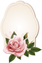 розовая роза, цветок розы, бутон розы, цветы, флора, роза, зеленое растение, pink rose, rose flower, flowers, green plant, rosarose, rosenblüte, rosenknospe, blumen, grüne pflanze, rose rose, fleur rose, bouton de rose, fleurs, flore, rose, plante verte, capullo de rosa, fiore rosa, bocciolo di rosa, fiori, pianta verde, rosa rosa, rosa flor, rosebud, flores, flora, rosa, planta verde, рожева троянда, квітка троянди, бутон троянди, квіти, троянда, зелена рослина, открытка