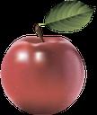 красное яблоко, спелое яблоко, плод дерева яблоня, яблоко, фрукты, red apple, ripe apple, apple tree fruit, apple, fruit, roter apfel, reifer apfel, obstbaum apfelbaum, apfel, obst, pomme rouge, pomme mûre, pommier d'arbres fruitiers, pommes, fruits, manzana roja, manzana madura, fruta del árbol de manzano, manzana, mela rossa, mela matura, frutta albero di melo, mela, frutta, maçã vermelha, maçã madura, fruta macieira árvore, maçã, fruta, червоне яблуко, стигле яблуко, плід дерева яблуня, яблуко, фрукти