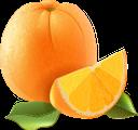 апельсин, цитрус, фрукты, тропические фрукты, желтый, десерт, еда, citrus, tropical fruits, yellow, food, zitrusfrüchte, früchte, tropische früchte, gelb, essen, orange, agrumes, fruits, fruits tropicaux, jaune, dessert, nourriture, naranja, cítricos, frutas tropicales, amarillo, postre, arancio, agrumi, frutti, frutti tropicali, giallo, dolce, cibo, laranja, cítrico, frutas, frutas tropicais, amarelo, sobremesa, comida, фрукти, тропічні фрукти, жовтий, їжа