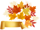осенняя листва, красный лист, чистый лист, баннер, кленовые листья, желтый лист, осень, листья клена, опавшая листва, осенний лист растения, природа, autumn foliage, red leaf, blank leaf, yellow leaf, autumn, maple leaves, fallen leaves, autumn plant leaf, herbstlaub, rotes blatt, leeres blatt, gelbes blatt, herbst, ahornblätter, abgefallene blätter, herbstpflanzenblatt, natur, feuillage d'automne, feuille rouge, feuille blanche, bannière, feuille jaune, automne, feuilles d'érable, feuilles tombées, feuille de plante d'automne, nature, follaje de otoño, hoja roja, hoja en blanco, bandera, hoja amarilla, otoño, hojas de arce, hojas caídas, hoja de planta de otoño, naturaleza, fogliame autunnale, foglia rossa, foglia bianca, bandiera, foglia gialla, autunno, foglie di acero, foglie cadute, foglia di pianta autunnale, natura, folhagem de outono, folha vermelha, folha em branco, banner, folha amarela, outono, folhas de bordo, folhas caídas, folha de planta no outono, natureza, осіннє листя, червоний лист, чистий аркуш, банер, кленове листя, жовтий лист, осінь, листя клена, опале листя, осінній лист рослини