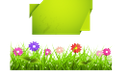 экология, зеленое растение, зеленая трава, цветы, чистый лист, ecology, green plant, green grass, flowers, a clean sheet, ökologie, grüne pflanze, grünes gras, blumen, ein sauberes blatt, écologie, plante verte, l'herbe verte, des fleurs, une feuille blanche, ecologia, grama, uma folha limpa, ecología, planta verde, hierba verde, flores, una hoja limpia