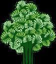 лиственное дерево, зеленое растение, флора, дерево, deciduous tree, green plant, tree, laubbaum, grüne pflanze, baum, arbre à feuilles caduques, plante verte, flore, arbre, árbol de hoja caduca, las plantas verdes, árbol, albero a foglie decidue, pianta verde, albero, árvore de folha caduca, planta verde, flora, árvore, листяне дерево, зелена рослина, растение