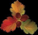 желудь, желтый лист, осенняя листва, осень, красный лист, yellow leaf, autumn foliage, autumn, red leaf, oak leaf, acorn, gelbes blatt, herbstlaub, herbst, rotes blatt, eichenblatt, eichel, feuille jaune, feuillage d'automne, automne, feuille rouge, feuille de chêne, gland, hoja amarilla, follaje de otoño, caída, hoja roja, hoja de roble, bellota, foglia gialla, fogliame autunnale, cadere, foglia rossa, foglia di quercia, ghianda, folha amarela, folhagem de outono, queda, folha vermelha, folha do carvalho, bolota, жовтий лист, осіннє листя, осінь, червоний лист, лист дуба, жолудь