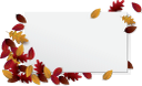 осенняя листва, красный лист, желтый лист, осень, опавшая листва, осенний лист растения, белый лист, чистый лист, рамка для фотошопа, природа, autumn foliage, red leaf, yellow leaf, autumn, fallen leaves, autumn leaf of a plant, white leaf, blank leaf, frame for photoshop, herbstlaub, rotes blatt, gelbes blatt, herbst, abgefallene blätter, herbstblatt einer pflanze, weißes blatt, leeres blatt, rahmen für photoshop, natur, feuillage d'automne, feuille rouge, feuille jaune, automne, feuilles mortes, feuille d'automne d'une plante, feuille blanche, feuille vierge, cadre pour photoshop, nature, follaje de otoño, hoja roja, hoja amarilla, otoño, hojas caídas, hoja otoñal de una planta, hoja blanca, hoja en blanco, marco para photoshop, naturaleza, fogliame autunnale, foglia rossa, foglia gialla, autunno, foglie cadute, foglia d'autunno di una pianta, foglia bianca, cornice per photoshop, natura, folhagem de outono, folha vermelha, folha amarela, outono, folhas caídas, folha de outono de uma planta, folha branca, folha em branco, moldura para photoshop, natureza, осіннє листя, червоний лист, жовтий лист, осінь, опале листя, осінній лист рослини, білий аркуш, чистий аркуш, рамка для фотошопу