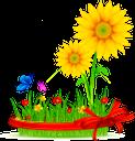 подсолнух, цветок подсолнуха, желтый цветок, зеленое растение, бабочка, полевые цветы, флора, sunflower, sunflower flower, yellow flower, green plant, grass, bow, butterfly, sonnenblume, sonnenblumeblume, gelbe blume, grünpflanze, gras, bogen, schmetterling, tournesol, fleur de tournesol, fleur jaune, plante verte, herbe, arc, papillon, fleurs sauvages, flore, girasol, flor de girasol, flor amarilla, hierba, mariposa, flores silvestres, girasole, fiore di girasole, fiore giallo, pianta verde, erba, farfalla, fiori di campo, girassol, flor girassol, flor amarela, planta verde, grama, arco, borboleta, wildflowers, flora, соняшник, квітка соняшника, жовта квітка, зелена рослина, трава, бант, метелик, польові квіти