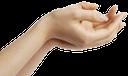 рука, кисть руки, жест, пальцы, часть тела, ладонь, открытая ладонь, пальцы руки, указательный палец, ладонь вверх, просьба
