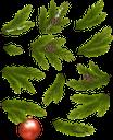 ветка ёлки, шары для ёлки, новогоднее украшение, шишка, рождественское украшение, новый год, рождество, праздник, зеленое растение, ветка дерева, christmas tree balls, pinecone, christmas decoration, new year, christmas, holiday, green plant, tree branch, christmas tree branch, christbaumkugeln, tannenzapfen, weihnachtsdekoration, neujahr, weihnachten, feiertag, grünpflanze, baumast, weihnachtsbaumast, boules de sapin de noël, pomme de pin, décoration de noël, branche de sapin, nouvel an, noël, vacances, plante verte, branche d'arbre, branche, bolas de árbol de navidad, piña, decoración navideña, año nuevo, navidad, vacaciones, rama de árbol, rama de árbol de navidad, sfere dell'albero di natale, pigna, decorazione natalizia, capodanno, natale, vacanze, pianta verde, ramo di albero, ramo di albero di natale, bolas de árvore de natal, pinha, decoração de natal, ano novo, natal, férias, planta verde, galho de árvore, galho de árvore de natal, кулі для ялинки, новорічна прикраса, різдвяна прикраса, новий рік, різдво, свято, зелена рослина, гілка дерева, гілка ялинки