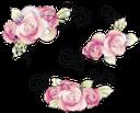 цветы, роза, цветочный узор, flowers, floral pattern, blumen, rosen, blumenmuster, fleurs, roses, motif floral, estampado de flores, fiori, rose, motivo floreale, flores, rosas, teste padrão floral, квіти, троянда, квітковий візерунок