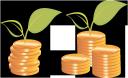 золотая монета, деньги, зеленое растение, росток, gold coin, money, green plant, germ, goldmünze, geld, grüne pflanze, sprießen, les pièces d'or, d'argent, plante verte, pousse, moneda de oro, dinero, brote, moneta d'oro, soldi, pianta verde, germoglio, moeda de ouro, dinheiro, planta verde, broto, золота монета, гроші, зелена рослина, паросток