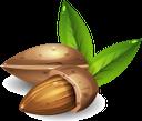 миндаль, орехи, almonds, nuts, mandeln, nüsse, amandes, noix, almendras, nueces, mandorle, noci, amêndoas, nozes, мигдаль, горіхи