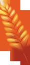 вриезия, цветок вриезии, тропические цветы, распустившийся цветок, зеленое растение, цветы, флора, vriesia flower, tropical flowers, blooming flower, green plant, flowers, vriesia blume, tropische blumen, blühende blume, grüne pflanze, blumen, fleur de vriesia, fleurs tropicales, fleur en fleurs, plante verte, fleurs, flore, flor de vriesia, flores tropicales, flor en flor, fiore di vriesia, fiori tropicali, fiore che sboccia, pianta verde, fiori, vriesia, flor vriesia, flores tropicais, flor desabrochando, planta verde, flores, flora, врієзія, квітка врієзії, тропічні квіти, розквітла квітка, зелена рослина, квіти