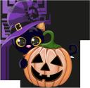 хэллоуин, тыква, кот, праздник, pumpkin, cat, holiday, kürbis, katze, urlaub, citrouille, chat, vacances, calabaza, vacaciones, halloween, zucca, gatto, vacanza, dia das bruxas, abóbora, gato, férias, хеллоуїн, гарбуз, кіт, свято