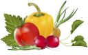 помидор, сладкий перец, лук, овощи, томаты, tomato, sweet pepper, onion, radish, vegetables, tomatoes, paprika, zwiebeln, radieschen, gemüse, tomaten, poivron, oignon, radis, légumes, pimiento, cebolla, rábano, verduras, pomodoro, peperone dolce, cipolla, ravanello, verdure, pomodori, tomate, pimenta doce, cebola, rabanete, vegetais, tomates, помідор, солодкий перець, цибуля, редис, овочі, томати