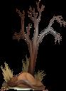 дерево, сухое дерево, ствол дерева, дерево без листьев, wood, dry tree, tree trunk, tree without leaves, baum, toter baum, baumstamm, baum ohne blätter, arbre, arbre mort, tronc d'arbre, arbre sans feuilles, árbol, árbol muerto, tronco de árbol, árbol sin hojas, albero, albero morto, tronco d'albero, albero senza foglie, árvore, árvore morta, tronco de árvore, árvore sem folhas, сухе дерево, стовбур дерева, дерево без листя