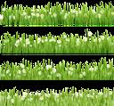 флора, зеленая трава, green grass, grünes gras, flore, herbe verte, la flora, la hierba verde, erba verde, flora, grama verde, полевые цветы, белая ромашка