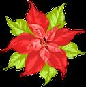 цветы, красный цветок, flowers, red flower, spring, blumen, rote blumen, frühling, fleurs, fleur rouge, printemps, flor roja, fiori, fiore rosso, flores, flor vermelha, primavera, квіти, червона квітка, весна