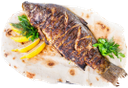 жареная рыба, лимон, рыба гриль, жареный карп на лаваше с лимоном, речной карп, тарелка с рыбой, fried fish, lemon, fish grilled, fried carp on pita bread with lemon, river carp, a fish dish, gebratene fisch, zitrone, fisch gegrillt, gebraten karpfen auf fladenbrot mit zitrone, fluss karpfen, ein fischgericht, poisson frit, citron, poissons grillés, la carpe frite sur pain pita avec du citron, la carpe de rivière, un plat de poisson, pescado frito, limón, pescado a la parrilla, la carpa frita en pan de pita con el limón, la carpa de río, un plato de pescado, pesce fritto, limone, pesce alla griglia, carpa fritta sul pane pita con il limone, il fiume carpa, un piatto di pesce, peixe frito, limão, peixe grelhado, carpa frito no pão pita com limão, carpa rio, um prato de peixe