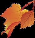 желтый лист, осенняя листва, осень, кленовый лист, yellow leaf, autumn foliage, autumn, maple leaf, gelbes blatt, herbstlaub, herbst, ahornblatt, feuille jaune, feuillage d'automne, automne, feuille d'érable, hoja amarilla, follaje de otoño, otoño, hoja de arce, foglia gialla, fogliame autunnale, autunno, foglia d'acero, folha amarela, folha do outono, outono, folha de bordo, жовтий лист, осіннє листя, осінь, кленовий лист